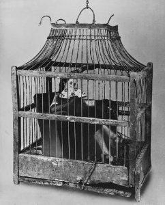Grete Stern / Sueño nº 45. Sin título, de la serie Los Sueños, Buenos Aires, 1949